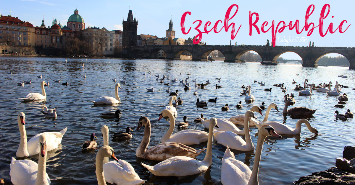 Teach English Abroad | Teach English in the Czech Republic | Tips for Teaching English Abroad | Tips for Teaching English in Europe | TEFL Teacher in Europe | TEFL Teacher in the Czech Republic | Where to Teach English Abroad | How to get your TEFL Certificate | Teach Abroad as an ESL Teacher | Teach Business English Abroad | #TeachAbroad #TeachEnglishAbroad - California Globetrotter