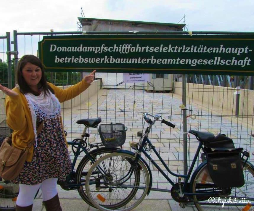 Longest german word - Donaudampfschifffahrtselektrizitätenhauptbetriebswerkbauunterbeamtengesellschaft