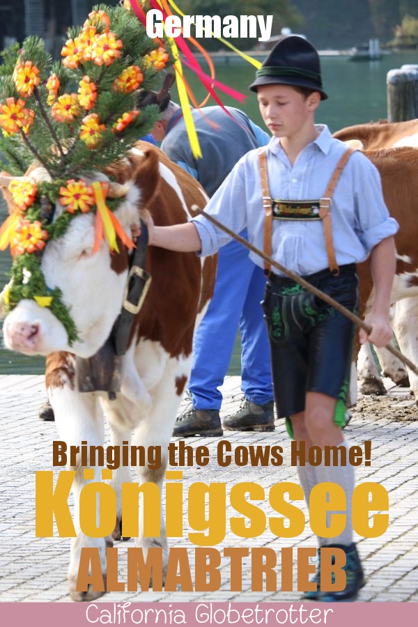 Königssee Almabtrieb | Things to do in Germany in Autumn | Bavarian Traditions in the Fall | Alpine Traditions in Germany | Returning of the Cows Headdress Celebration | Kranzkuh | Traditional Lederhosen & Dirndl | Best Things to do in Fall in the Alps | Bavarian Alps Traditions | #Königssee #Berchtesgaden #Bavaria #Germany #Europe - California Globetrotter
