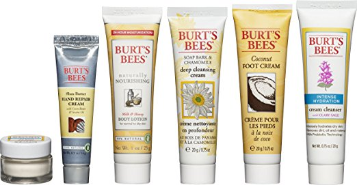 burts-bees-travel-kit