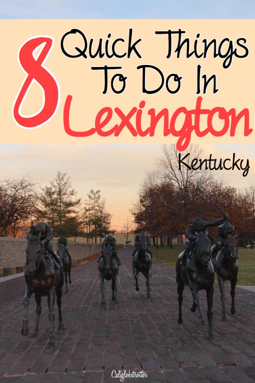 8 Quick Things to do in Lexington, Kentucky | What to see in Lexington, KY | Street Art in Lexington | Wall Murals in Lexington | Thoroughbred Capital of the World | Thoroughbred Retirement Animal Sanctuary #Lexington #Kentucky - California Globetrotter