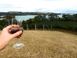 Amazing Alcohol Related Trails Around the World - New Zealand's North Island Wineries - Waiheke - Two Feet, One World - California Globetrotter