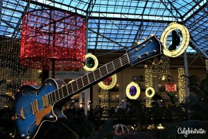 Gaylord Oryland Resort | Nashville, TN: Honky Tonk Heaven | Honky Tonk Highway | Things to do in Nashville | Music City Total Access Pass | Nashville City Card | Budget-friendly Nashville | Day Trips from Nashville | Nashville Street Art | Wall Murals in Nashville | Nashville City Guide | #Nashville #Tennessee #StreetArt #Budgetfriendly - California Globetrotter
