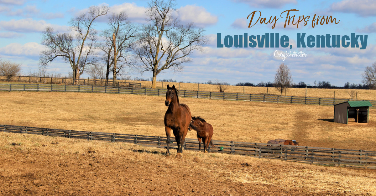 Day Trips from Louisville, KY | Things to do near Louisville | Bourbon, Horses & History | Kentucky Bourbon Trail | Midwestern Cities | Cities to Visit in the Midwest | Top US Cities to Visit | Small Town USA | #Kentucky #BourbonCountry #TravelUSA - California Globetrotter