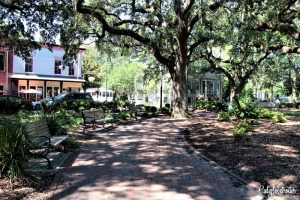 Chippewa Square & Forrest Gump Bench | A Busy Bee's Guide to Savannah, Georgia | Things to do in Savannah | 24 hours in Savannah | Savannah City Guide | Savannah Itinerary | Getting Around Savannah | Where to Eat in Savannah | Savannah Historic District | Downtown Savannah | #Savannah #Georgia #TravelUSA - California Globetrotter