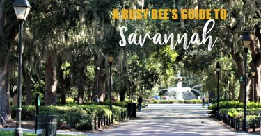 A Busy Bee's Guide to Savannah, Georgia | Things to do in Savannah | 24 hours in Savannah | Savannah City Guide | Savannah Itinerary | Getting Around Savannah | Where to Eat in Savannah | Savannah Historic District | Downtown Savannah | #Savannah #Georgia #TravelUSA - California Globetrotter