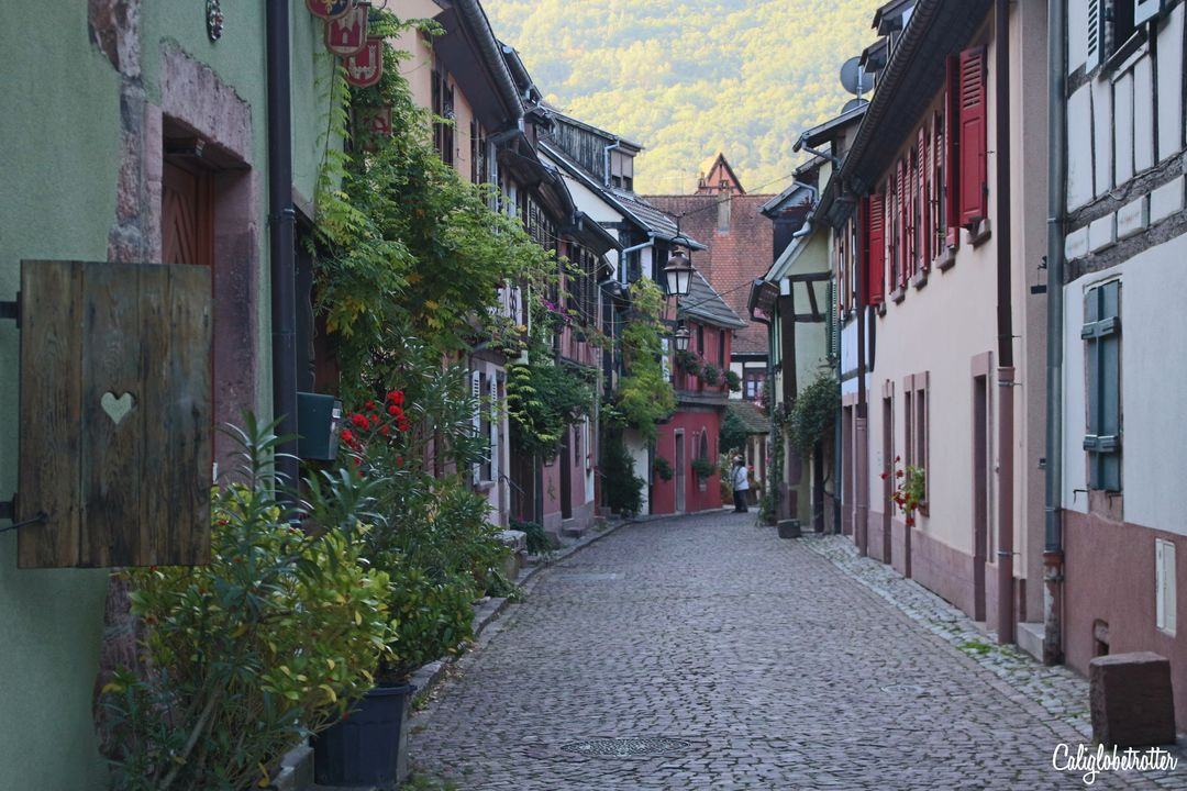 Kayersberg | 3 Day Alsace Wine Route Itinerary | 11 fairytale Villages in Alsace | Alsace Fairy Tale Villages | The Best Towns to Visit in Alsace | Best Towns on the Alsace Wine Route | Alsacec Wine Route Villages | Alsace Weekend Itinerary | Alsace Road Trip | French Fairy Tale Towns | Fairy tale Towns in France | Visit France | Visit Alsace | #Alsace #AlsaceWineRoute #France - California Globetrotter